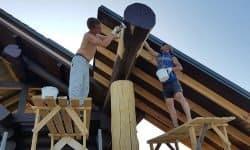 Wooden Evolution: Покраска наружных стен сруба - фото 1