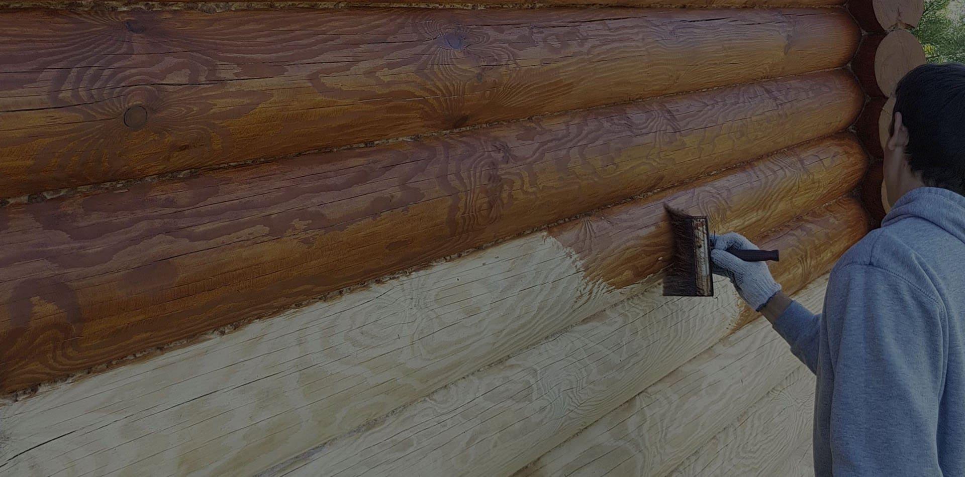 Wooden Evolution: Покраска наружных стен сруба