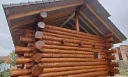 Wooden Evolution: Покраска наружных стен сруба - фото 10