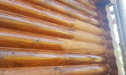 Wooden Evolution: Защита древесины - фото 1