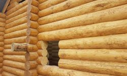 Wooden Evolution: Защита древесины - фото 3
